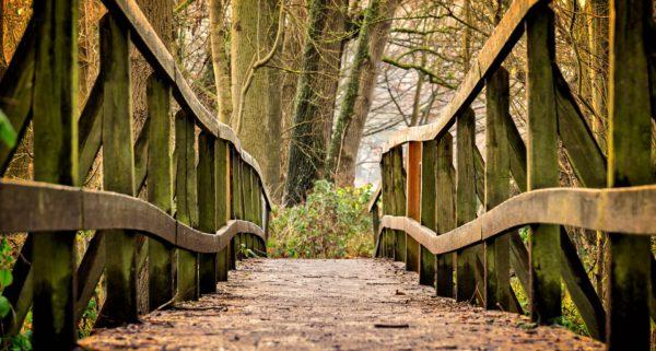 wandelen is onthaasten, 6 vette voordelen van wandelen